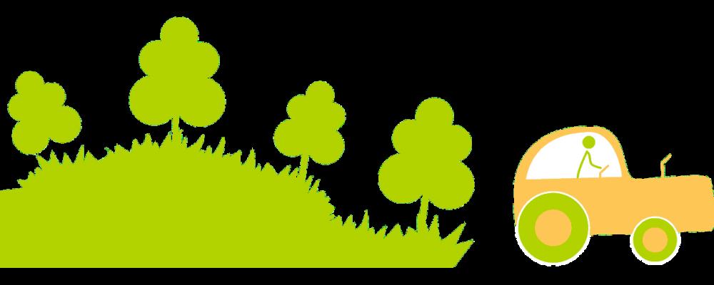 Recomendacines de plantación